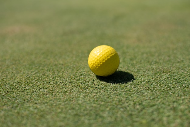 Golf field with yellow ball