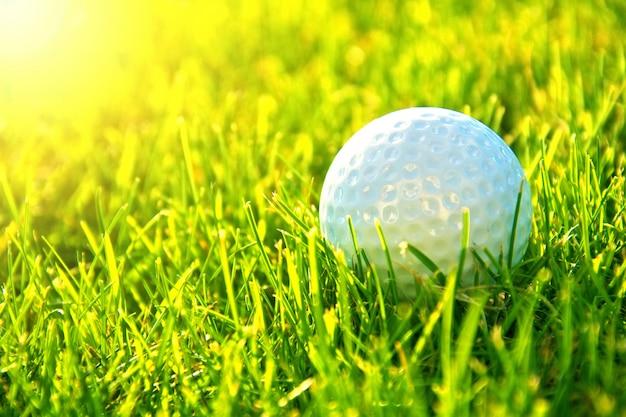 골프 게임