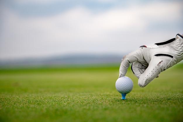 A golf player prepares a golf ball on a green course