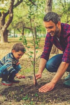 정원 가꾸기 좋은 날. 그의 어린 아들이 그를 돕는 동안 나무를 심는 행복한 청년