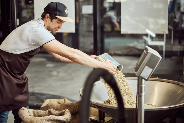Good-looking male worker in apron pouring green coffee beans into metal hopper