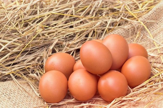 Куриные яйца хорошего качества на соломенном гнезде на размытом зеленом фоне, с белком и питательной ценностью на местной ферме в таиланде.