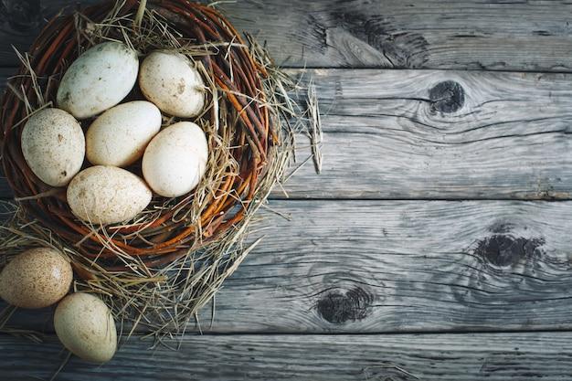 Goose eggs against a dark background. easter still life.