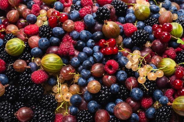 グーズベリー、ブルーベリー、桑、ラズベリー、白と赤のスグリの背景。