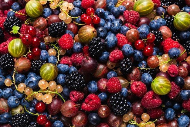 Gooseberries, blueberries, mulberry, raspberries, white and red currants.