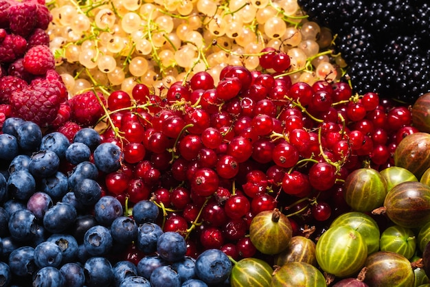 Gooseberries blueberries mulberry raspberries white and red currants