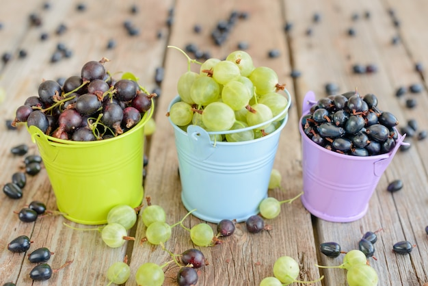 Gooseberry and blackcurrant in buckets. it can be used as a background
