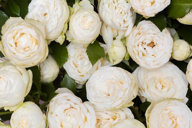 Gorgeous arrangement of flowers background