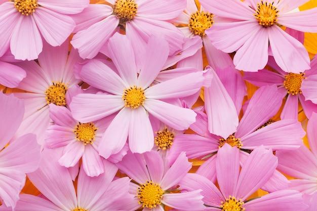 Шикарная композиция из цветов на обоях