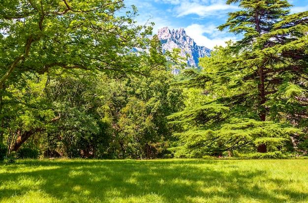 웅장한 아름다운 나무에 둘러싸인 화려한 녹색 초원