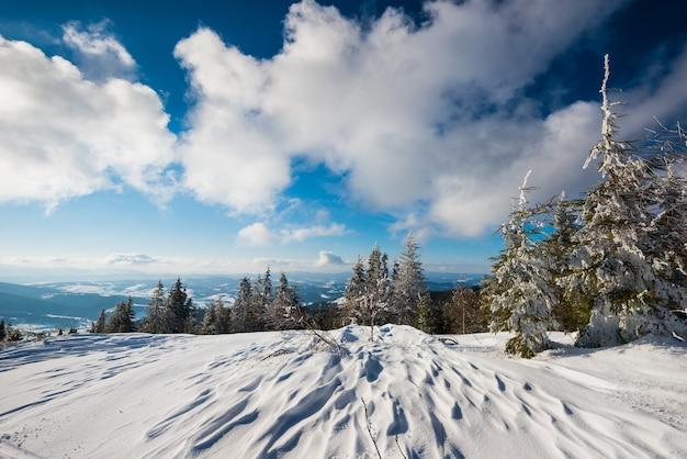晴れた凍るような冬の日に青い空と白い雲を背景にトウヒの森に覆われた山や丘の雪の斜面からのゴージャスな景色
