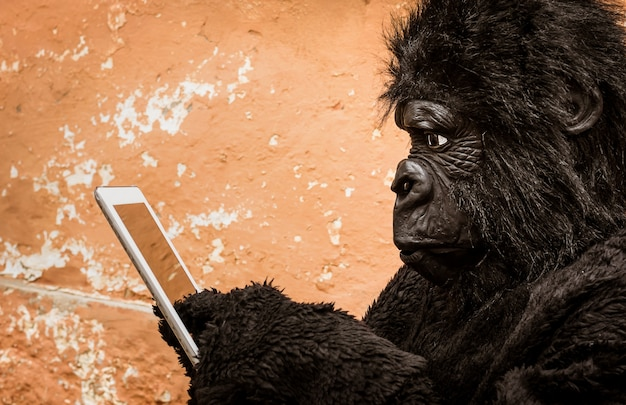 Gorilla with tablet representing concept of animal adaptation to new modern life technologies