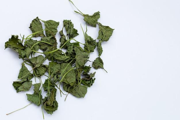 Gotu kola dried leaves on white background.