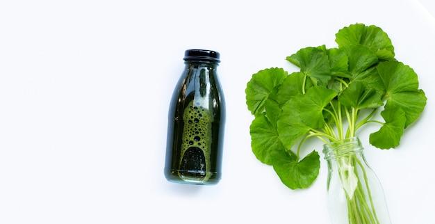 Сок из листьев готу кола для здоровья на белой поверхности