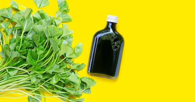 Gotu kolaは黄色の背景に健康のためにジュースを残します。コピースペース
