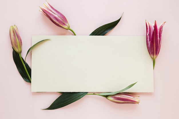 Gradient pink royal lilies surrounding a piece of paper