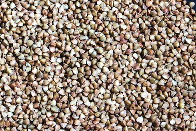 곡물 메밀, 세부 질감 배경, 메밀 배경의 근접 촬영. 고품질 사진
