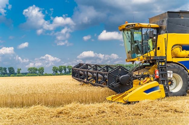 晴れた日にコンバインハーベスター。穀物と黄色のフィールド。農業技術は現場で働いています。