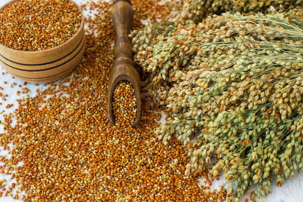 Grains of millet on a wooden spoon and in a box. twigs with millet