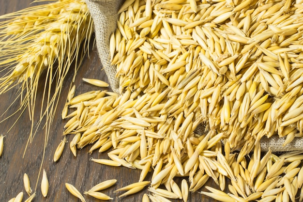Grains of oats in the bag. twig wheat on the table
