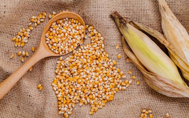 대 마 자루 배경에 말린 된 달콤한 옥수수의 곡물.