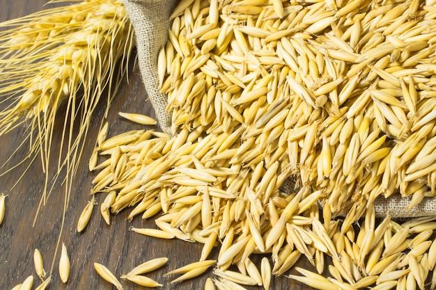 袋にオート麦の粒。テーブルの上の小枝小麦