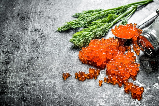 Grains of red caviar with salt and dill. on black rustic background