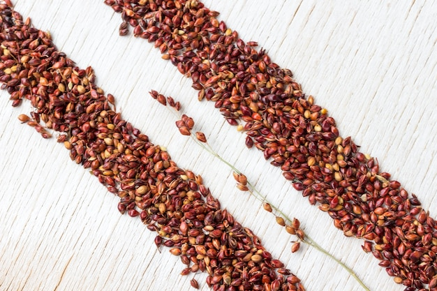 Grains of red millet lined with two stripes
