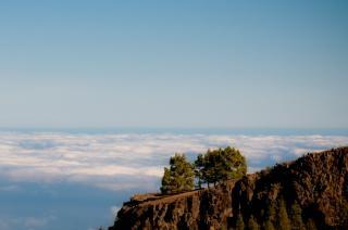 Gran canaria landscape  beauty