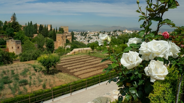 Granada - the gardens of alhambra palace.