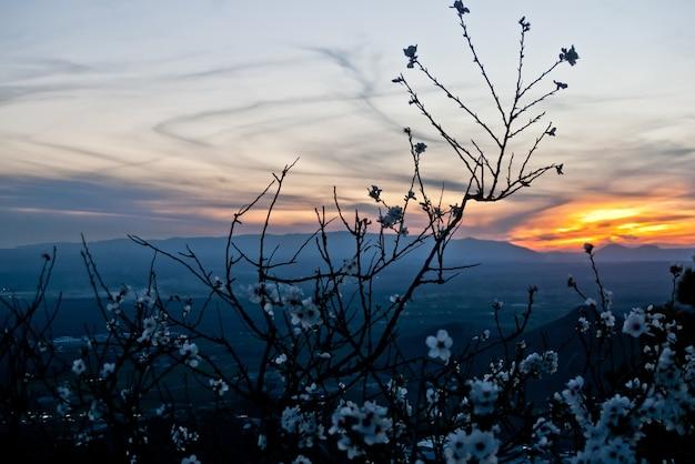 Гранада сьерра невада горы пейзаж
