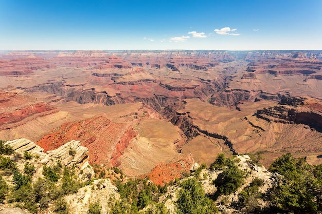Grand canyon national park wild nature