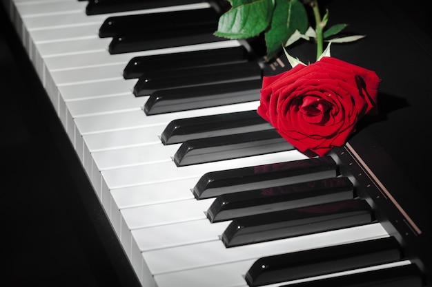 Grand piano with red rose