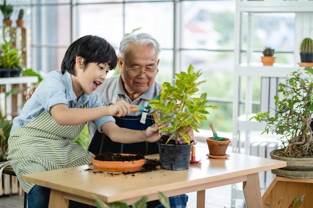 祖父の園芸と孫の指導は屋内で植物の世話をします