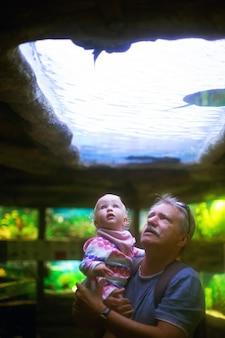 수족관에서 작은 손녀를 건네주는 할아버지. 다세대 가족이 물고기를 보고 있습니다. 유아 금발 소녀는 수족관에서 흥분됩니다. 세로 형식. 여가 활동 및 가족 시간