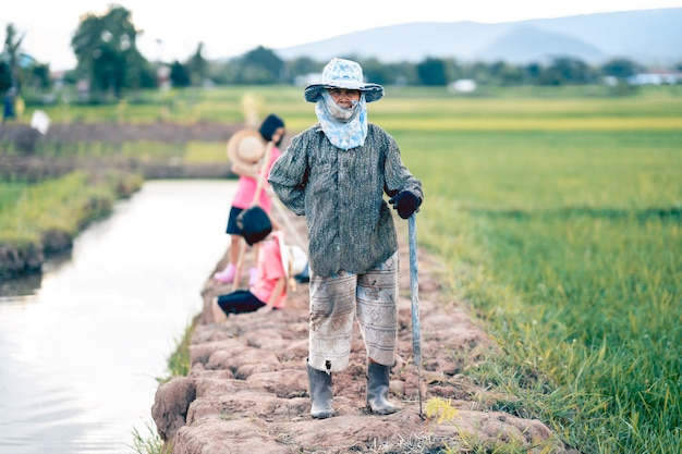 Grandmother and blurred kid working in organic farm in rural