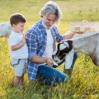 Nonno e ragazzino con capra