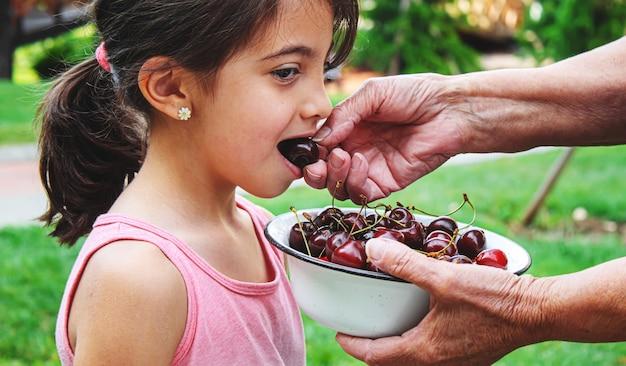 祖父母は子供にサクランボを食べさせます。selectivefocus.nature