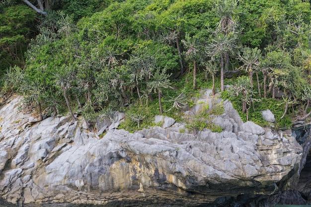 화강암 절벽 산, 그것은 아름다운 자연 테마로 마그마에서 형성되는 암석의 일종입니다.