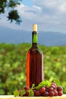 地中海の自然を背景にブドウと赤ワイン