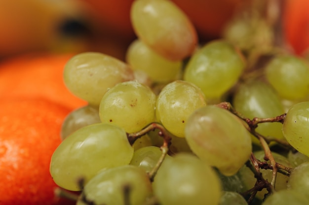 Grape close up with small water droplets on the peel
