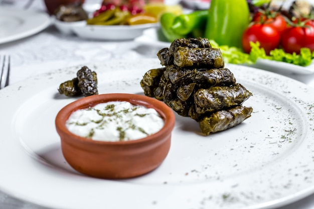 Grape leaves dolma minced meat grape leaves plain youghurt mint spices side view