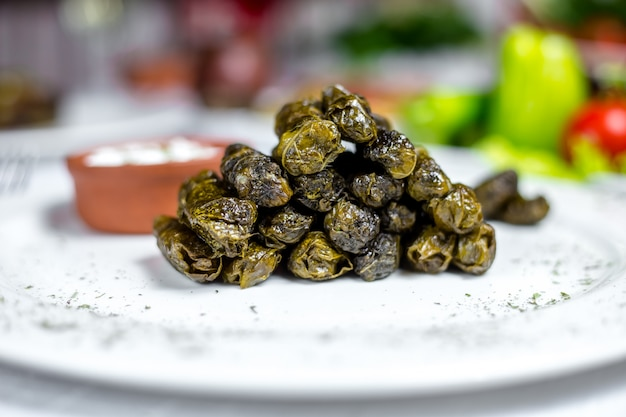 Grape leaves dolma minced meat grape leaves plain youghurt spices side view