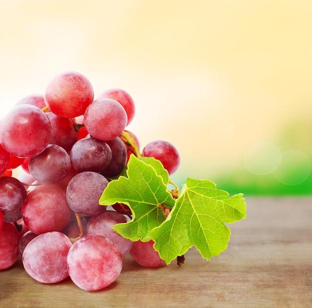 Виноград на фоне затуманенное природы с copyspace
