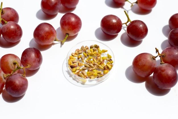 白い背景の上の新鮮な果物とブドウの種子。