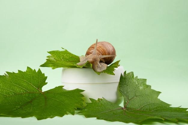 포도 달팽이 점액 크림, 스킨 케어 화장품.