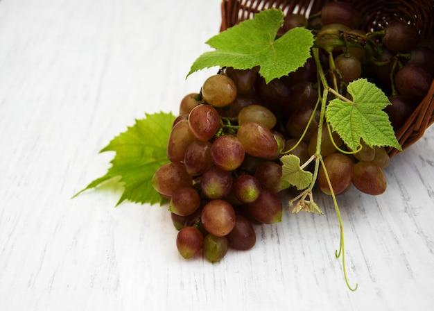 Grape with leaf