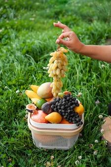 손에 포도와 신선한 과일 바구니