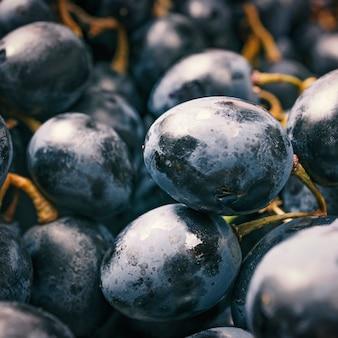 ブドウ、マクロ写真。ワイン用ブドウのクローズアップ。