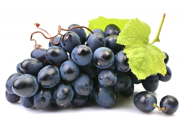 Grapes on a white